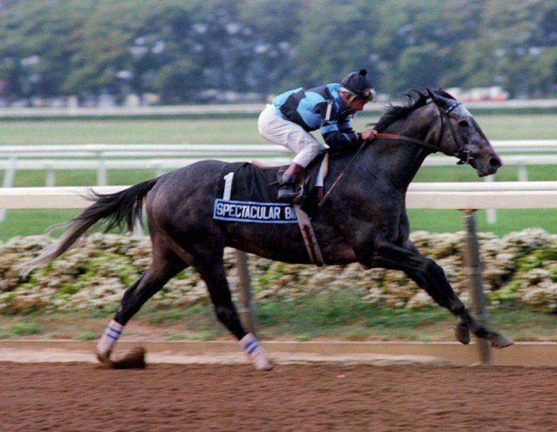Spectacular Bid Walkover in Woodward Stakes
