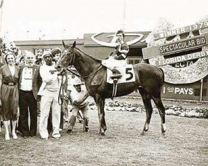 Spectacular Bid in winner's circle after Florida Derby
