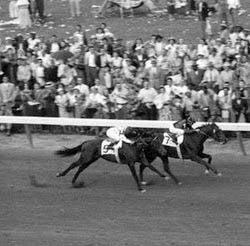 Swaps leading Nashua in the 1955 Kentucky Derby.