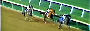 Wins Meadowlands Cup
