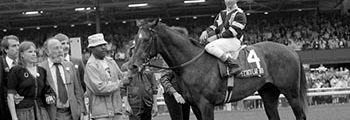 "<a href=""/april-26-1979-spectacular-bid-waltzes-in-blue-grass"">Wins Blue Grass Stakes</a>"
