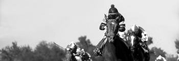 "<a href=""/40-years-ago-spectacular-bid-wins-derby"">Wins Kentucky Derby</a>"