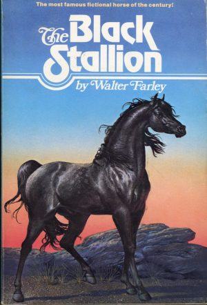 The Black Stallion book